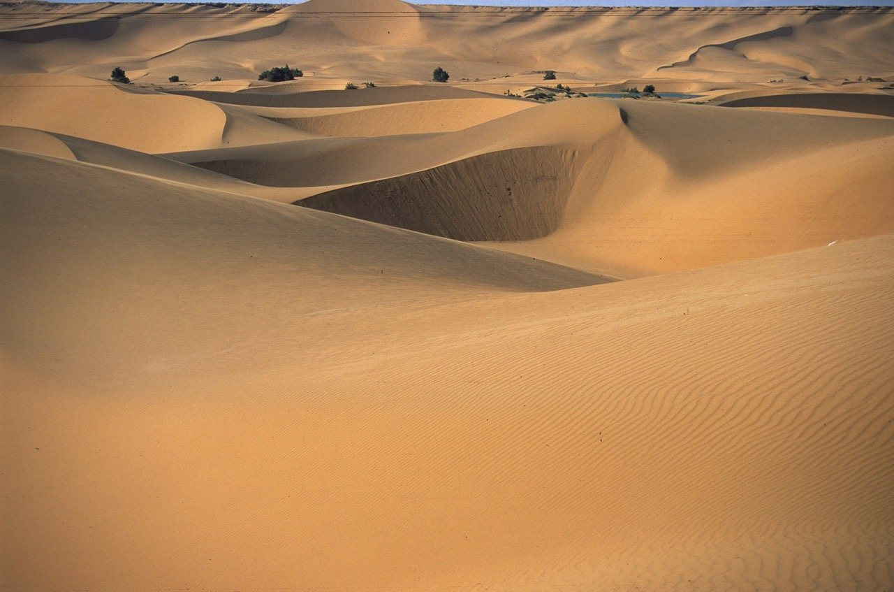 Desert Oais in Southern Morocco